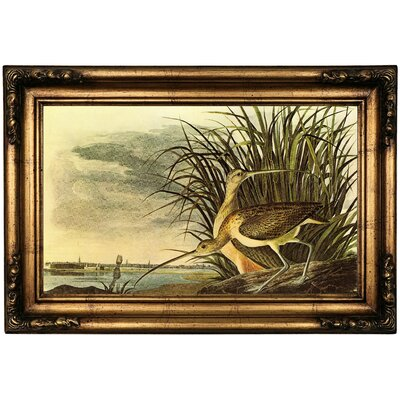 'Long Billed Curlew' Framed Oil Painting Print on Canvas Format: Bronze Framed, Size: 16.5