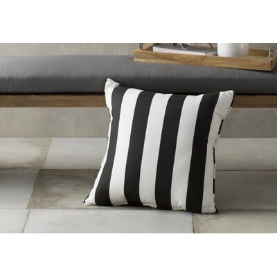 Outdoor Throw Pillow Color: Finnigan Tuxedo, Height: 22, Width: 22