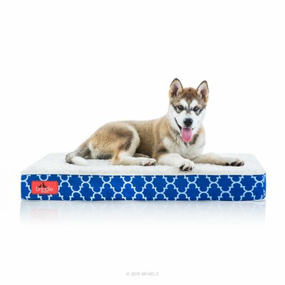 Waterproof Designer Memory Foam Pet Bed Size: Medium, Color: Navy Trellis