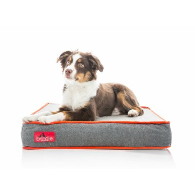 Waterproof Designer Memory Foam Pet Bed Size: Medium, Color: Charcoal Velour
