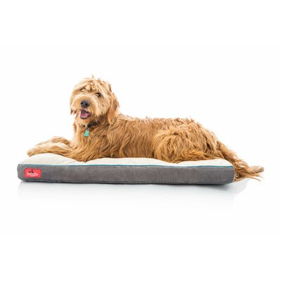 Soft Shredded Memory Foam Pet Bed Size: XXXL (52L x 34 W), Color: Khaki