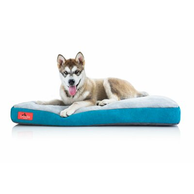 Soft Shredded Memory Foam Pet Bed Size: Medium (28 L x 18 W), Color: Teal