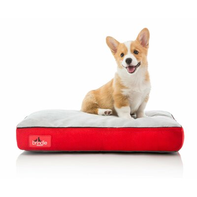 Soft Shredded Memory Foam Pet Bed Size: XXXL (52L x 34 W), Color: Red