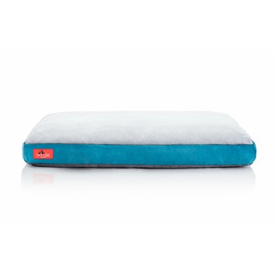 Soft Shredded Memory Foam Pet Bed Color: Teal, Size: Large (34L x 22 W)