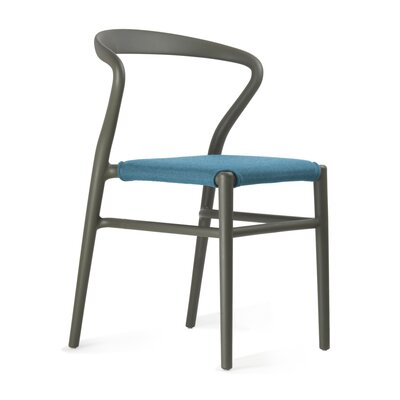 Joi Side Chair Upholstery: Light Blue, Finish: Dark Brown