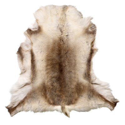 Noack Faux Sheepskin Brown/White Area Rug