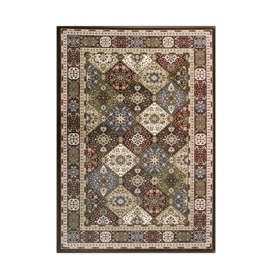 Kensington Brown Area Rug Rug Size: 7 x 10