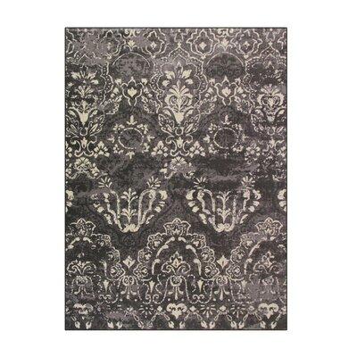 Hewish Gray Area Rug Rug Size: 92 x 124