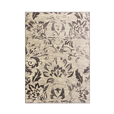 Klahn Gray Area Rug Rug Size: 311 x 511