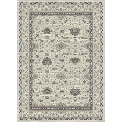 Highland Gray Area Rug Rug Size: 53 x 77