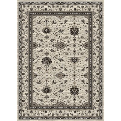 Highland Gray Area Rug Rug Size: 67 x 92