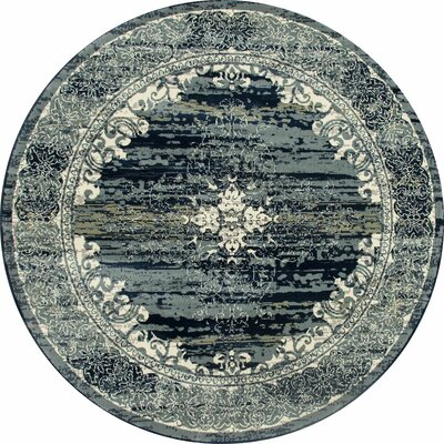 Chelsea Teal Blue Area Rug Rug Size: Round 53
