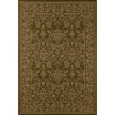 Beaminster Green/Beige Indoor/Outdoor Area Rug Rug Size: 53 x 77