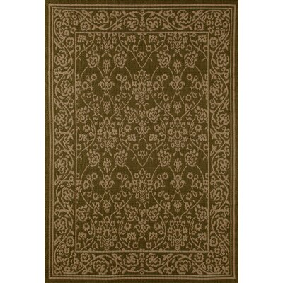 Plymouth Green/Beige Indoor/Outdoor Area Rug Rug Size: 67 x 92
