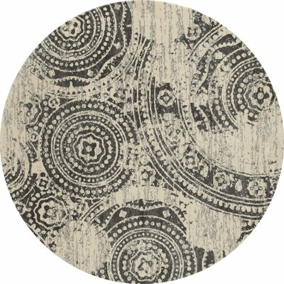 Dexter Gray/Cream Area Rug Rug Size: Runner 22 x 82