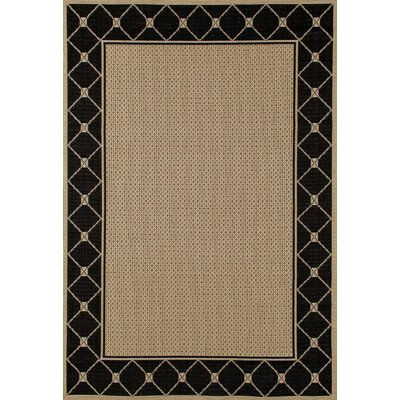 Plymouth Black/Beige Indoor/Outdoor Area Rug Rug Size: 27 x 41