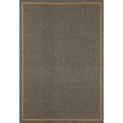 Plymouth Gray Indoor/Outdoor Area Rug Rug Size: 27 x 41