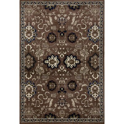 Arbor Brown/Cream Area Rug Rug Size: 53 x 77