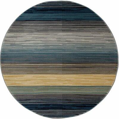 Vassallo Gray Area Rug Rug Size: ROUND 53
