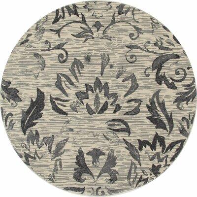 Klahn Gray Area Rug Rug Size: ROUND 710