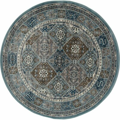 Arabella Multi-Colored Area Rug Rug Size: Round 8