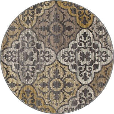 Arabella Yellow Area Rug Rug Size: Round 8