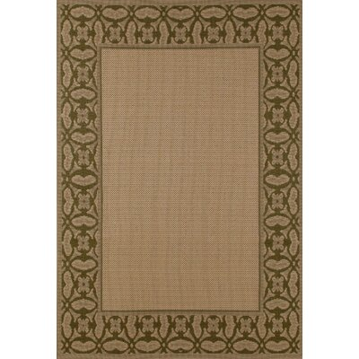 Beaminster Green/Beige Indoor/Outdoor Area Rug Rug Size: 92 x 126