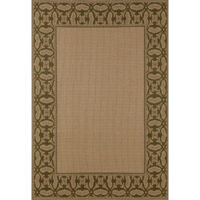 Plymouth Green/Beige Indoor/Outdoor Area Rug Rug Size: 92 x 126