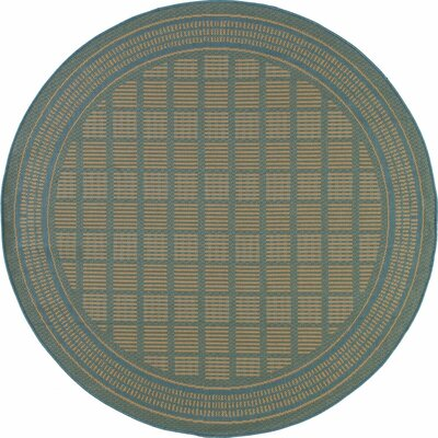 Cazares Blue Indoor/Outdoor Area Rug Rug Size: ROUND 67