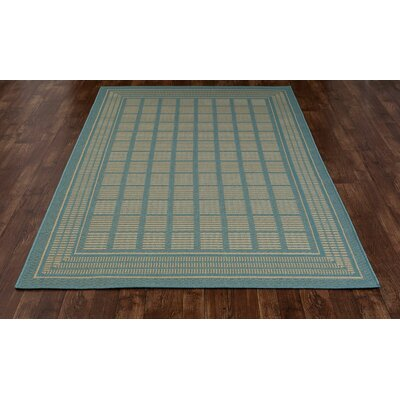 Plymouth Blue Indoor/Outdoor Area Rug Rug Size: 27 x 41