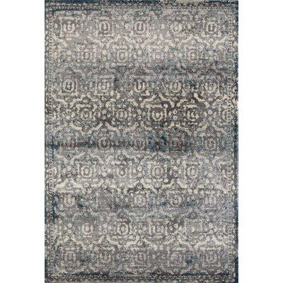 Arbor Gray/Teal Area Rug Rug Size: 53 x 77