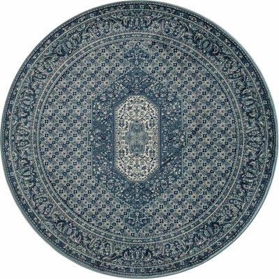 Hudson Blue Area Rug Rug Size: 710 x 10