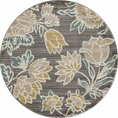 Hudson Gray Area Rug Rug Size: ROUND 53