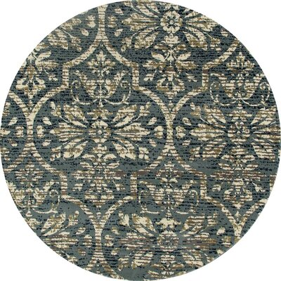 Channel Aqua/Cream Area Rug Rug Size: ROUND 710