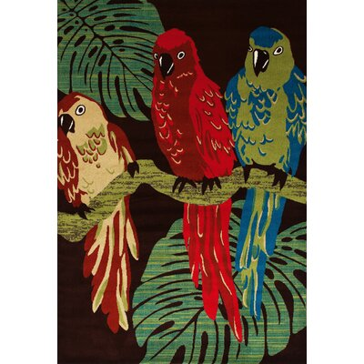 Antigua Parrots Brown/Green Indoor/Outdoor Area Rug Rug Size: 9 x 12