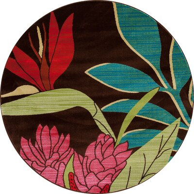 Vasser Brown/Red Indoor/Outdoor Area Rug Rug Size: ROUND 53