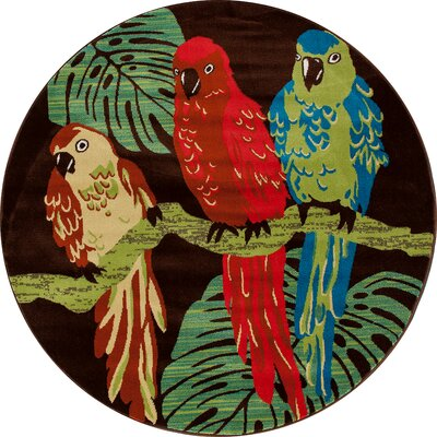 Vasser Parrots Brown/Green Indoor/Outdoor Area Rug Rug Size: ROUND 53