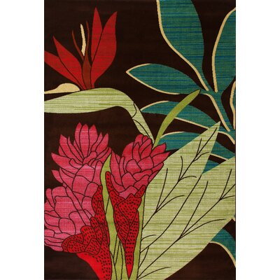 Antigua Aloha Brown/Red Indoor/Outdoor Area Rug Rug Size: 3 x 4
