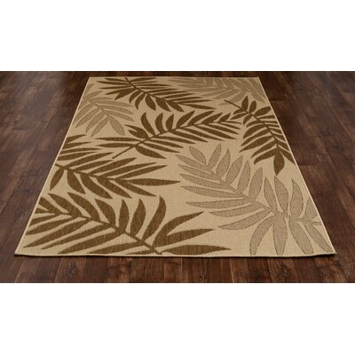 Coventry Brown Indoor/Outdoor Area Rug Rug Size: 27 x 41