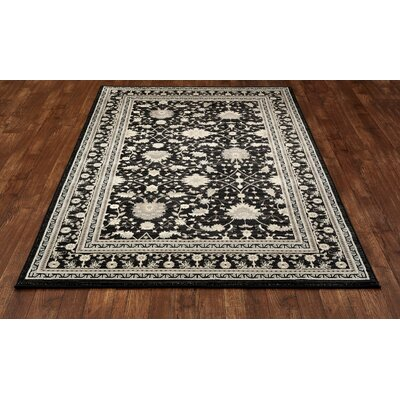 Highland Black/Cream Area Rug Rug Size: 53 x 77