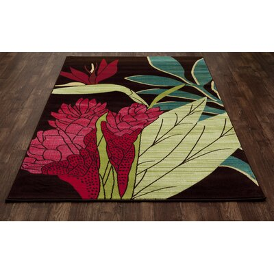 Vasser Brown/Red Indoor/Outdoor Area Rug Rug Size: 27 x 311