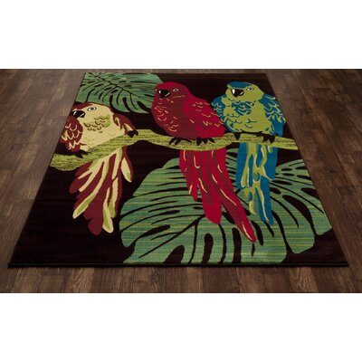 Vasser Parrots Brown/Green Indoor/Outdoor Area Rug Rug Size: 53 x 77