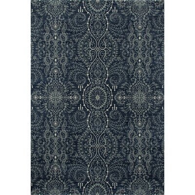 Castellano Blue Area Rug Rug Size: Runner 27 x 131