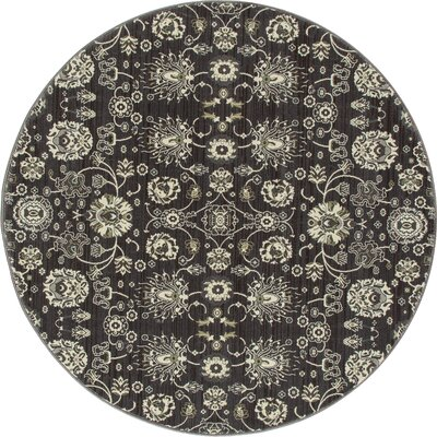 Castellano Gray/Cream Area Rug Rug Size: ROUND 53