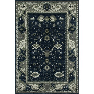 Castellano Navy Blue/Cream Indoor/Outdoor Area Rug Rug Size: 57 x 86
