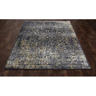 Devay Tibetan Gray Area Rug Rug Size: 1011 x 15