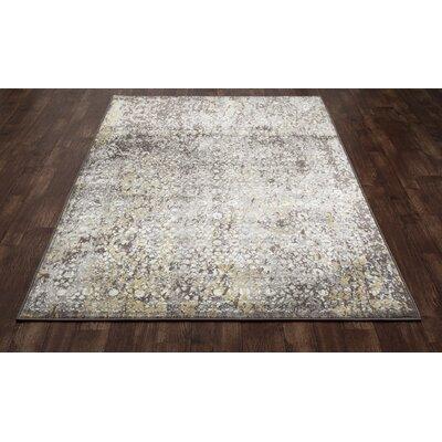Devay Brown/Mushroom Area Rug Rug Size: 710 x 11