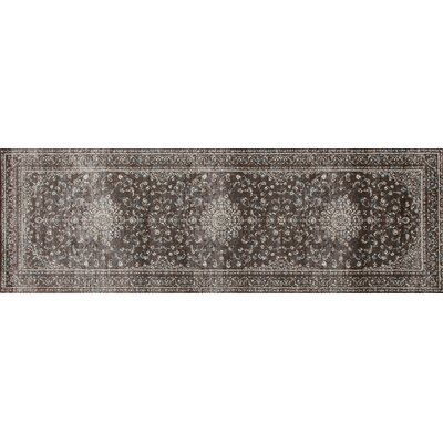 Devay Brown Indoor Area Rug Size: Runner 27 x 81