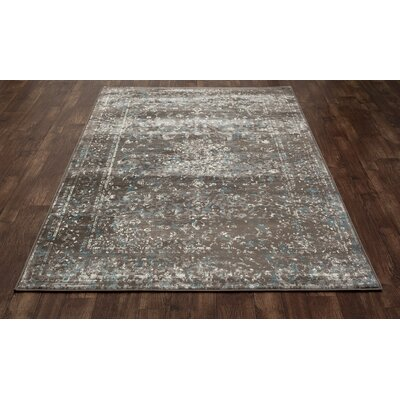 Devay Brown Indoor Area Rug Size: 53 x 77