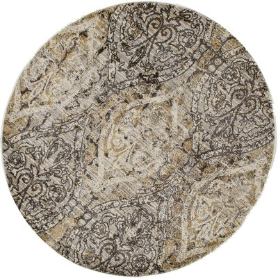 Drey Dark Gray/Cream Area Rug Rug Size: Round 53